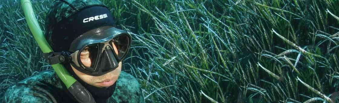 pepe viña submarina